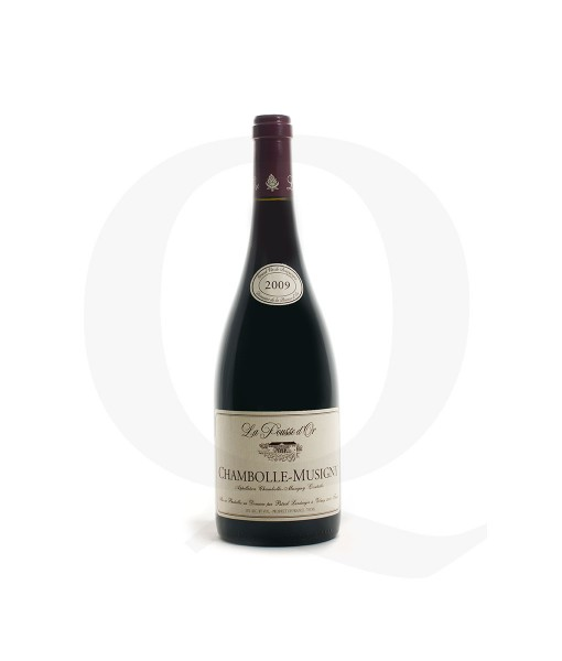 Chambolle-Musigny-2009